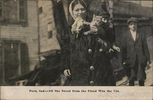 All She Saved from the Flood was the Cat Peru Indiana