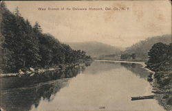 West Branch of the Delaware River
