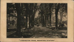 Luddington Road, Mountain Station