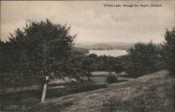 White Lake Through the Apple Orchard