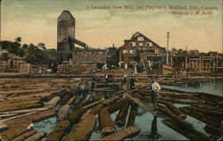 Jas. Playfair's Saw Mill
