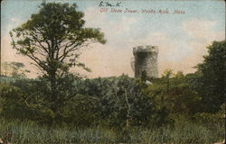 Old Stone Tower Postcard
