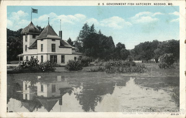 U s government fish hatchery neosho mo postcard for Fish farm missouri