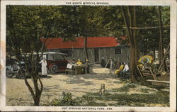 The Busch Medical Springs