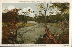 View of Chagres River, Near Palo Grande