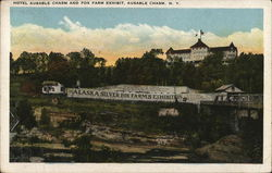 Hotel Ausable Chasm and Fox Farm Exhibit