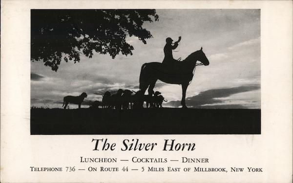 The Silver Horn Millbrook New York