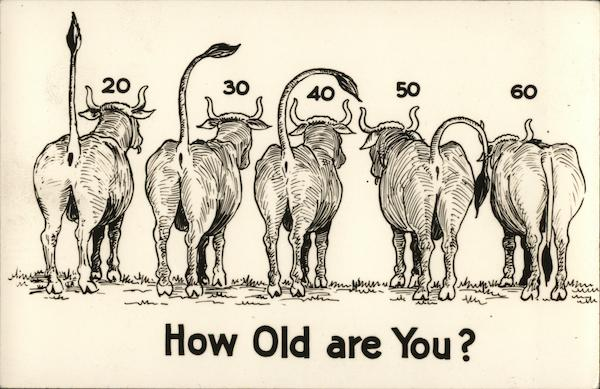 How Old Are You? Comic, Funny