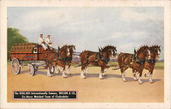 Wilson & Co. Six-Horse Clydesdale Team
