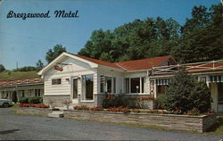 Breezewood Motel Postcard