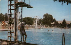 Tuhey Park Swimming Pool Postcard