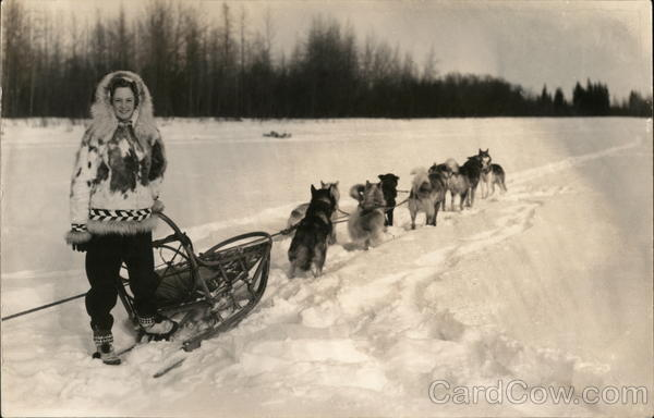 Person in Parka with Dog Sled in Snow Dogs