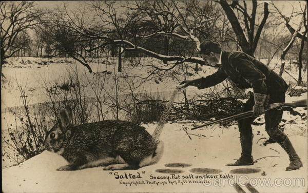 Hunter Pouring Salt Onto the Tail of Giant Rabbit Exaggeration