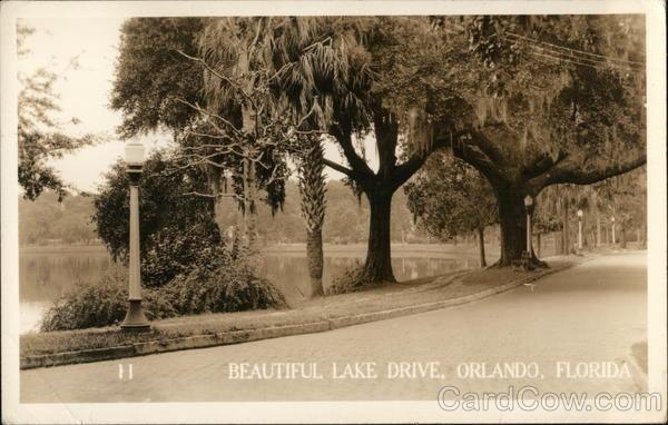 Beautiful Lake Drive Orlando Florida