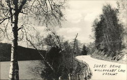 Shore Drive, Willoughby Lake