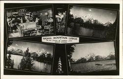 Signal Mountain Lodge on the Shores of Jackson Lake