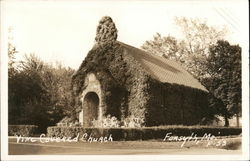 Vine Covered Church