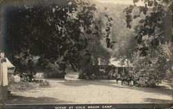 Scene at Cold Brook Camp - Cabins and Horses