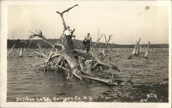 Two Men Standing on Mangled Tree in Lake