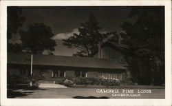 Cambria Pine Lodge