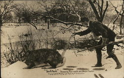 Hunter Pouring Salt Onto the Tail of Giant Rabbit