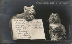 """Studying Their Lesson"" - Two Cats Reading a Book"