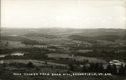Pond Village from Bear Hill