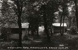 Woodland Path, Birchcliffe Postcard