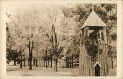 Michael - Wooden Bell Tower Near Grove of Trees