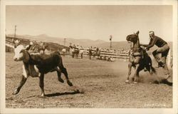 Man with Horse Behind a Running Calf