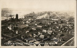 View of Business Section Postcard