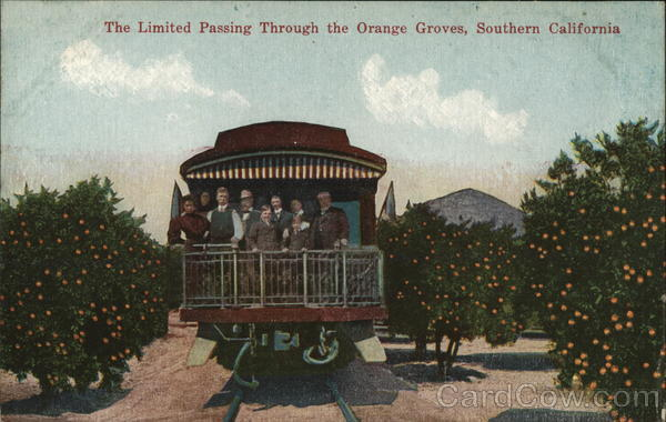 The Limited Passing Through the Orange Groves California