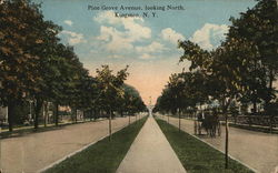 Pine Grove Avenue Looking North