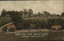 Bird's Eye View Shady Glen