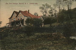 Elm Tree Cottage in the Catskill Mountains