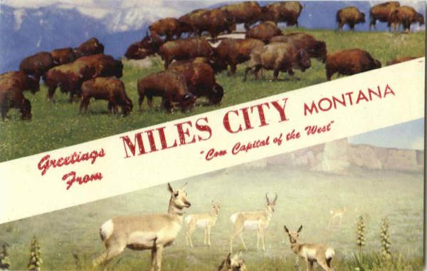 Greetings From Miles City Montana