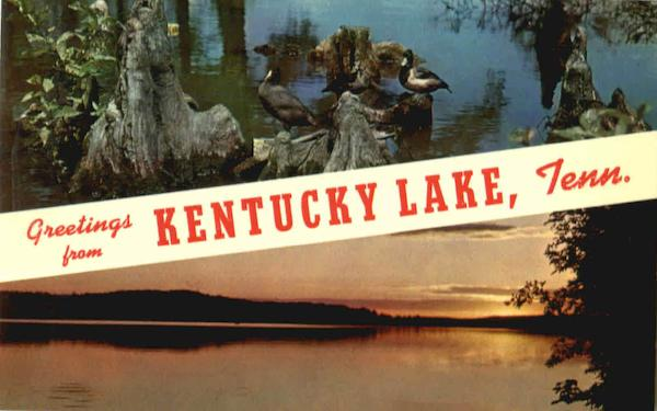 Greetings From Kentucky Lake Scenic Tennessee