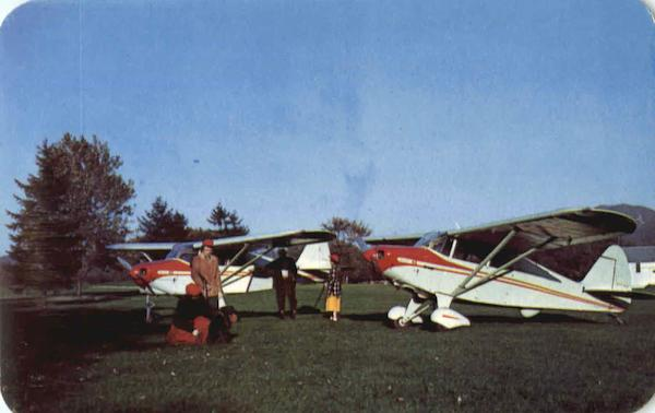 Two New Piper Packers For 1951 Aircraft