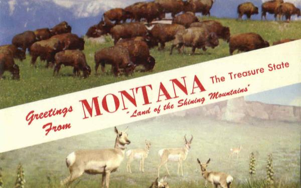 Greetings From Montana Scenic