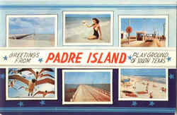 Greetings From Padre Island Postcard