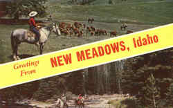 Greetings From New Meadows