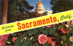 Greetings From Sacramento Postcard