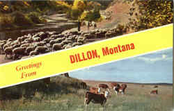 Greetings From Dillon