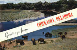 Greetings From Chickasha Postcard