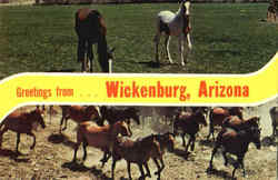 Greetings From Wickenburg