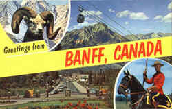 Greetings From Banff Postcard