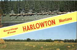 Montana Scenes Vintage Postcards Hardin Harlowton Martinsdale 1960s