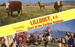 Greetings From Lillooet Postcard