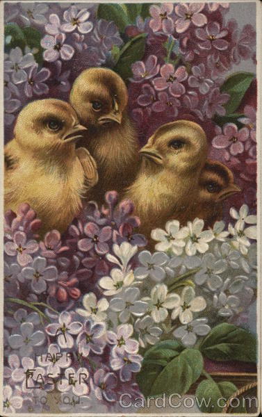 A Happy Easter To You With Chicks