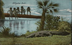 Alligator Bait
